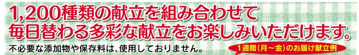 お弁当宅配-b01.png