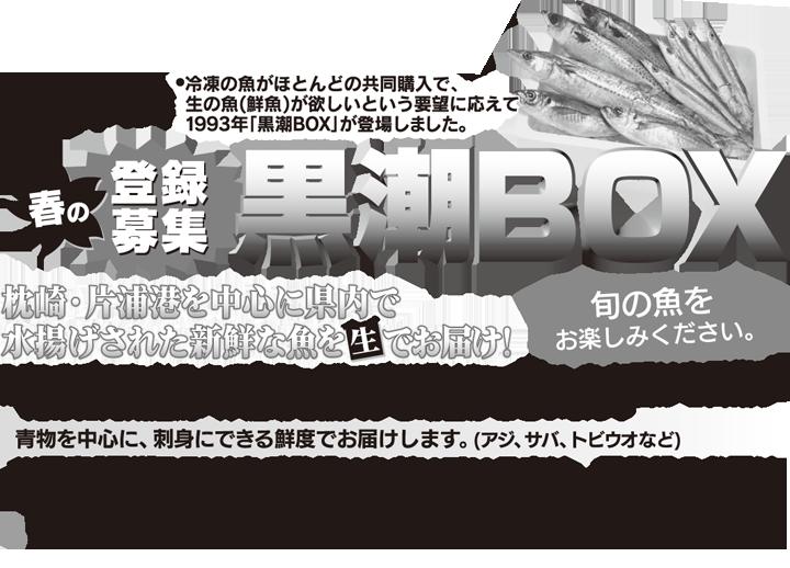 210316-fbox001.png